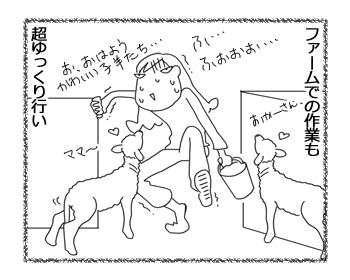 羊の国のラブラドール絵日記シニア!!「踏んだり蹴ったり」2