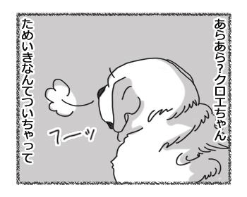 羊の国のラブラドール絵日記シニア!!「クロエちゃんのストレス」1