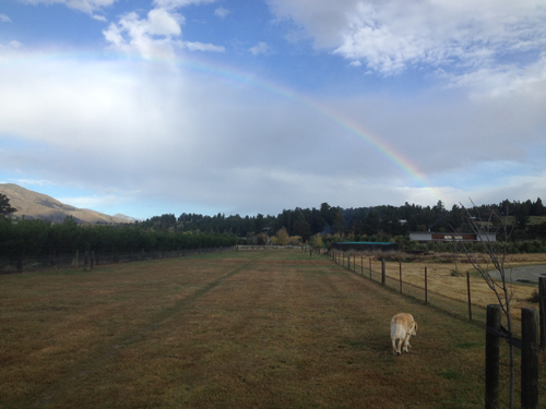 06052015_rainbow.jpg