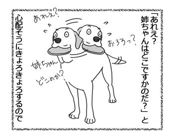 羊の国のラブラドール絵日記シニア!!「うれしそうな尻尾」2