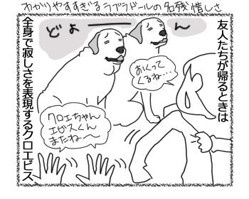 羊の国のラブラドール絵日記シニア!!「オークランドからのお客様」4