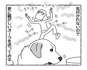 羊の国のラブラドール絵日記シニア!!「色々試す」3