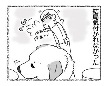 羊の国のラブラドール絵日記シニア!!「色々試す」4