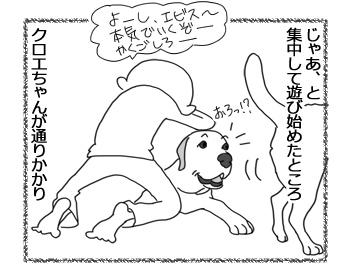 羊の国のラブラドール絵日記シニア!!「集中力」3