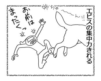 羊の国のラブラドール絵日記シニア!!「集中力」4