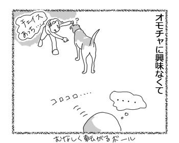 羊の国のラブラドール絵日記シニア!!「チェイスのあれこれ」4