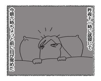 羊の国のラブラドール絵日記シニア!!「早起きは三文の・・・?」1