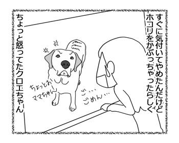 羊の国のラブラドール絵日記シニア!!「クロエちゃんからの教訓」2