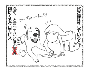 羊の国のラブラドール絵日記シニア!!「マルチタスキング」1