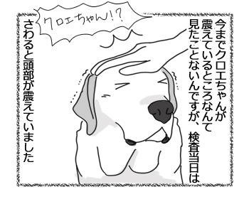 羊の国のラブラドール絵日記シニア!!「Satisfaction」1