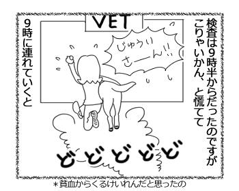 羊の国のラブラドール絵日記シニア!!「Satisfaction」2