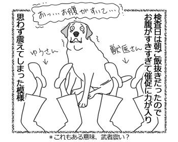 羊の国のラブラドール絵日記シニア!!「Satisfaction」3