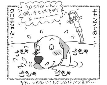 羊の国のラブラドール絵日記シニア!!「キャンプでのクロエちゃん」3