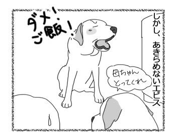 羊の国のラブラドール絵日記シニア!!「クロエちゃんの主張」5