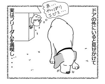 羊の国のラブラドール絵日記シニア!!「ちょっとした小芝居」4