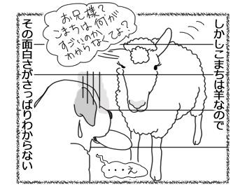 羊の国のラブラドール絵日記シニア!!「エビスとこまち」2