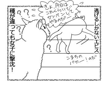 羊の国のラブラドール絵日記シニア!!「エビスとこまち」4