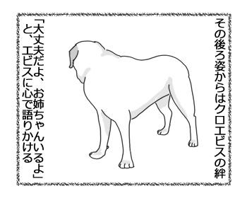 羊の国のラブラドール絵日記シニア!!「クロエビスの絆」4