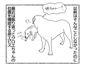羊の国のラブラドール絵日記シニア!!「クロエビスの絆」3