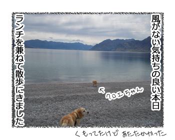 羊の国のラブラドール絵日記シニア!!「未確認水中物体とは!?」1