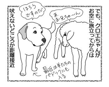 羊の国のラブラドール絵日記シニア!!「エビスの変化」3