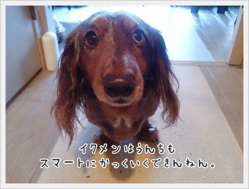 fc2_2015-03-12_03.jpg