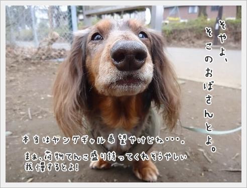 fc2_2015-03-23_02.jpg