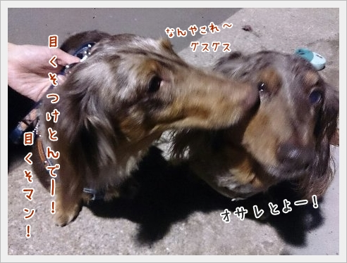 fc2_2015-4-10_02.jpg