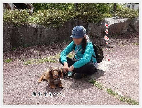 fc2_2015-5-12_01.jpg