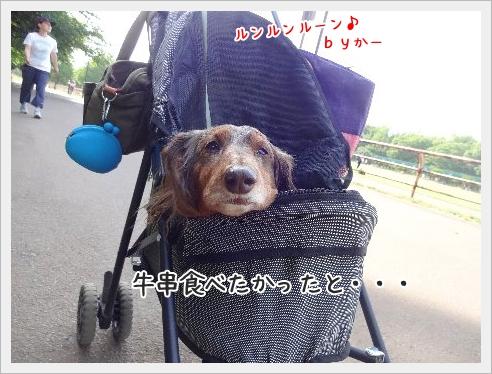 fc2_2015-5-19_08.jpg