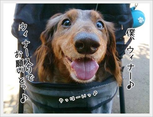 fc2_2015-6-01_04.jpg