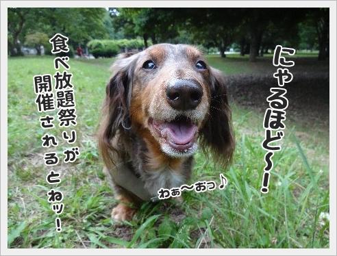 fc2_2015-6-05_03.jpg