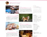 sakura_flow1.png