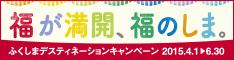 dc_banner234x60.jpg
