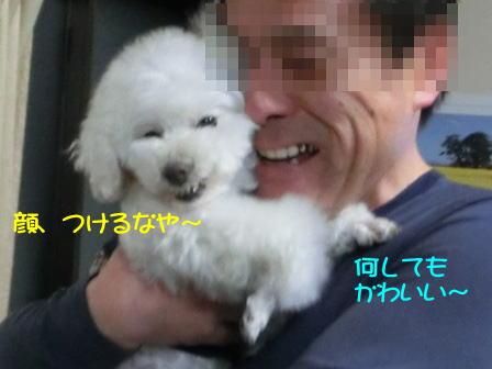 b0191.jpg