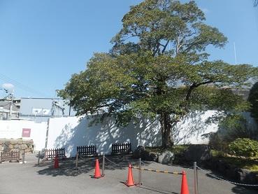 higasiyama3.jpg