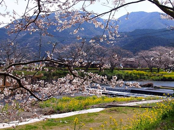 nakagawa-20150328-06s.jpg