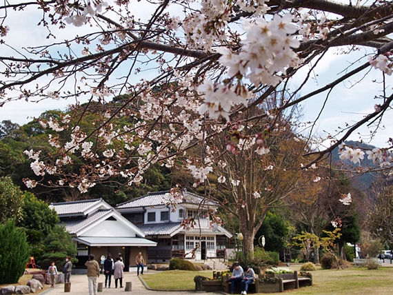 nakagawa-20150328-15s.jpg