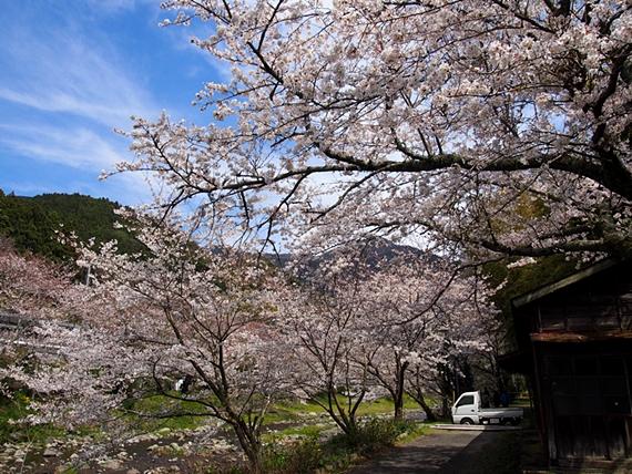 nakagawa-20150328-21s.jpg