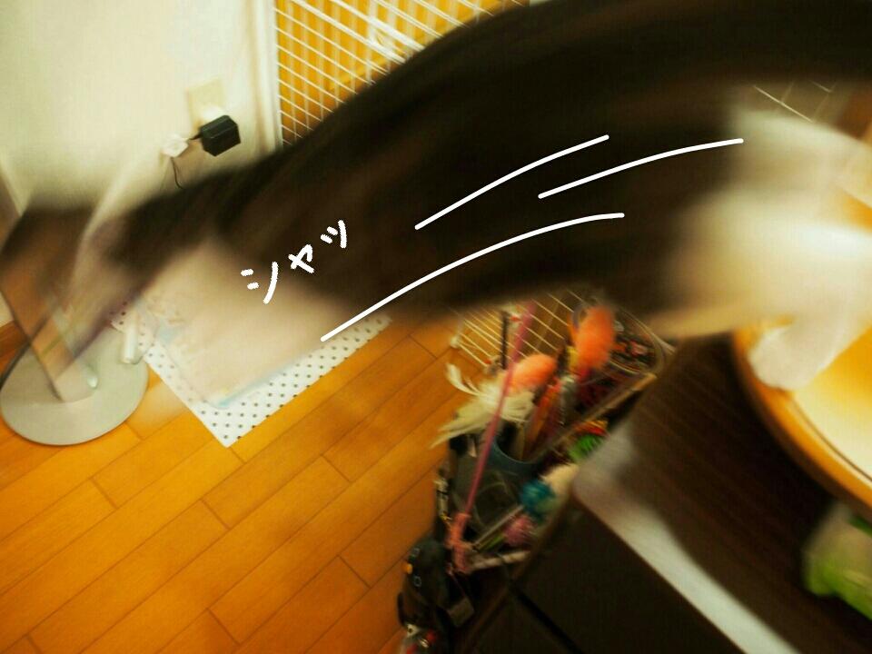 fc2_2015-06-27_00-25-53-073.jpg