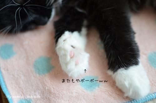 桜子ちゃん♪745