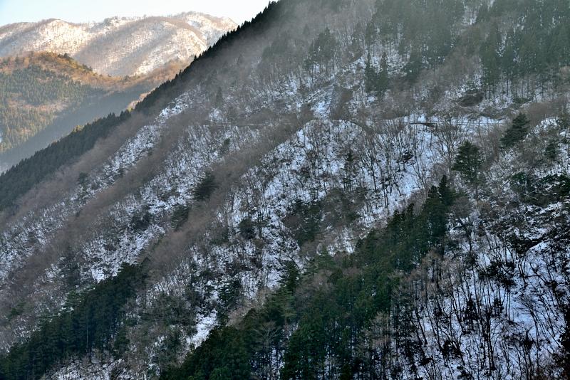 「雪の土須峠」       (徳島県神山)