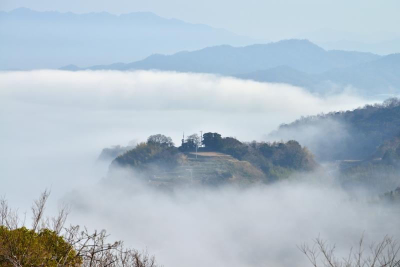 「霧のさぬき里山3」 (香川県庵治町)