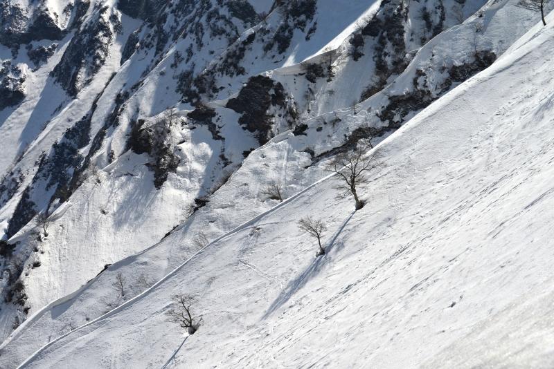 「大山冬景1」  (鳥取県大山)