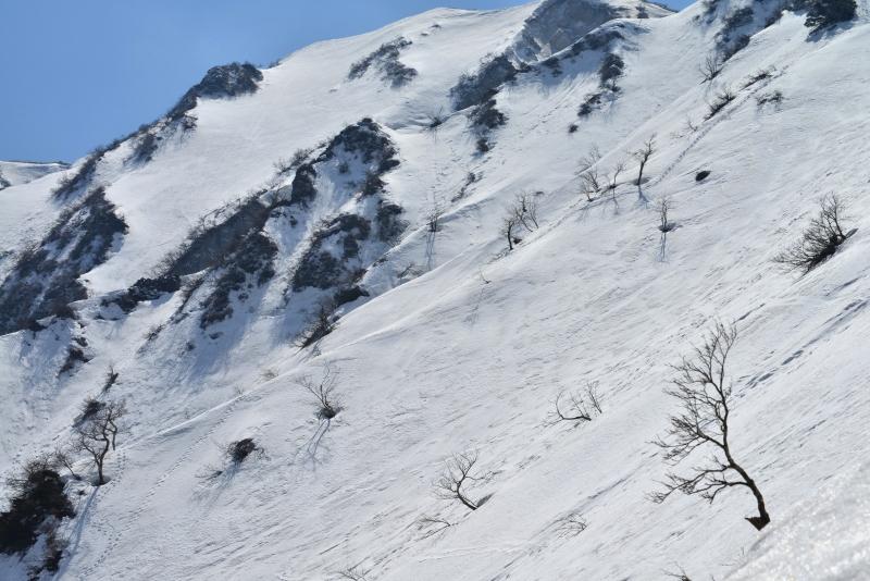 「大山冬景2」   (鳥取県大山)