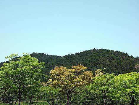 nobunaganoyakata9.jpg