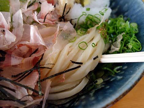 zeniya_udon8.jpg