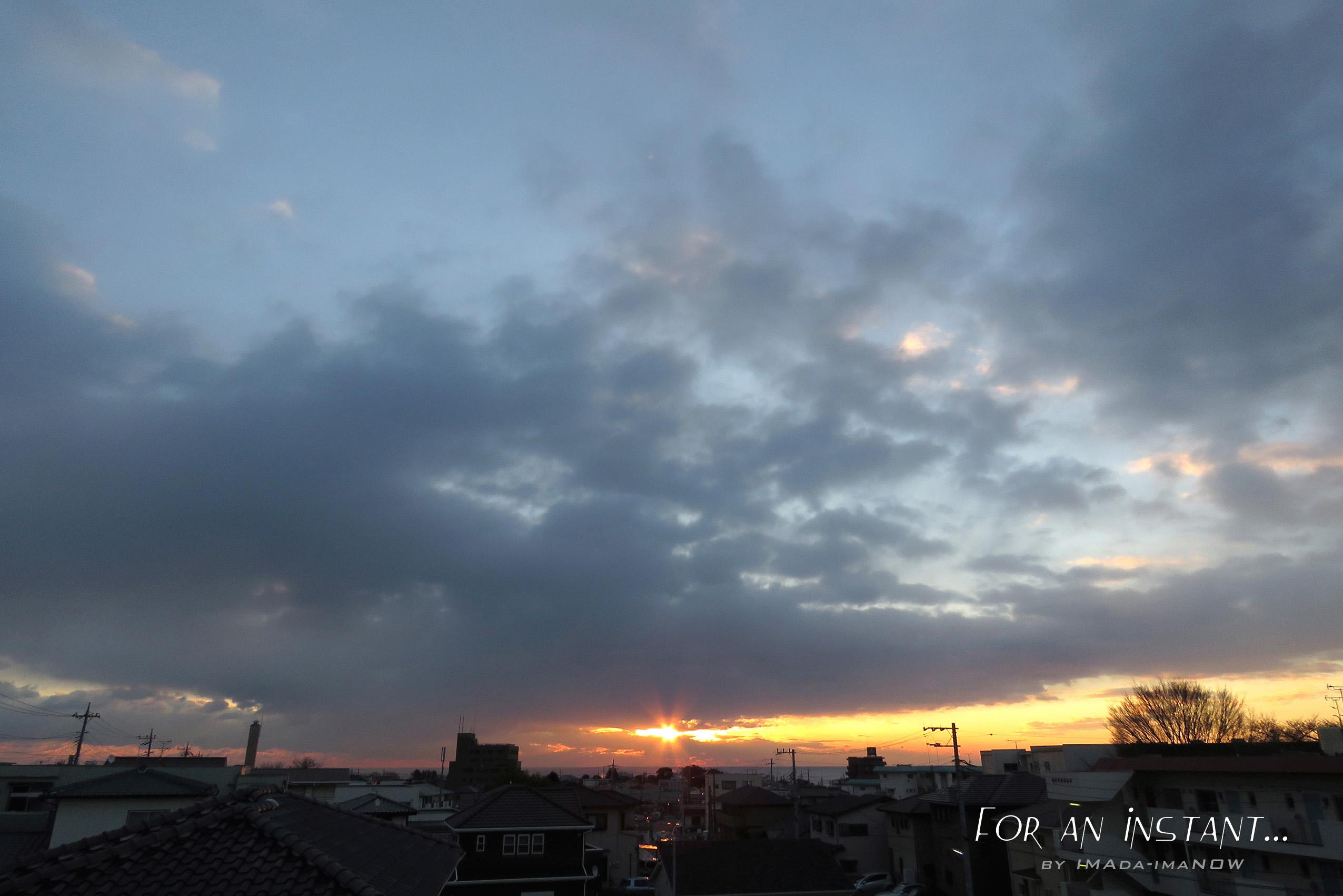 IMG_6893a.jpg