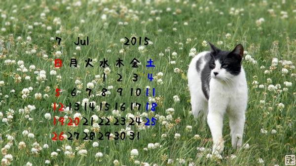 ニャポハウスカレンダー 2015年7月