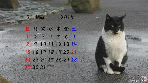 野良猫 3月カレンダー